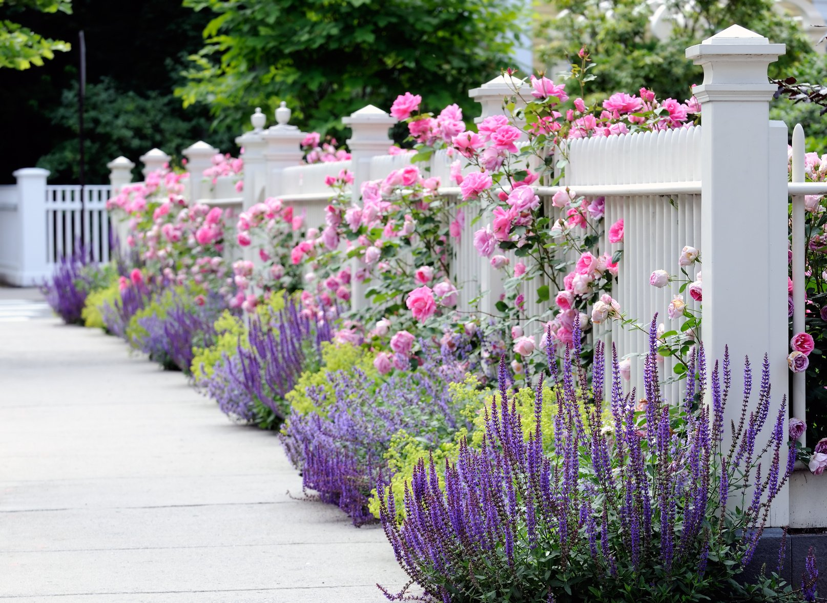 Gartentor selber bauen Anleitung