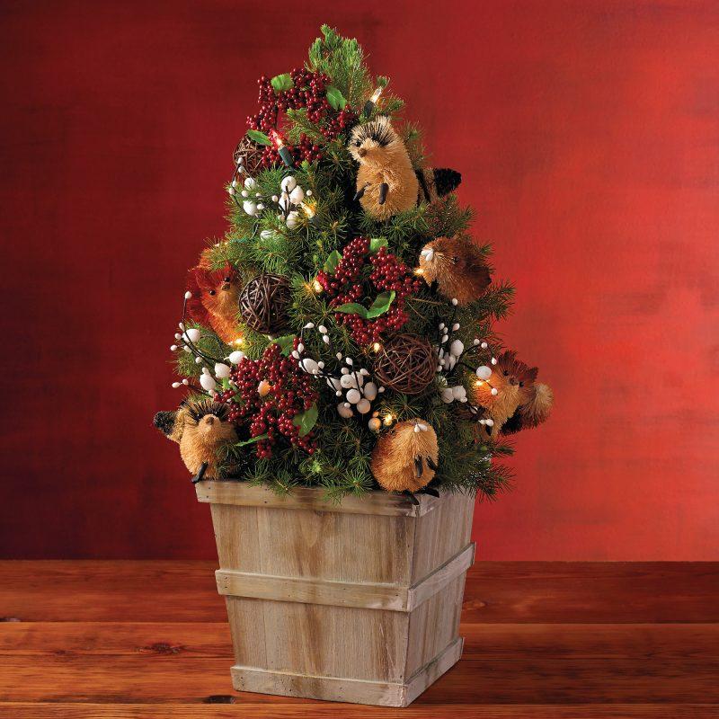 Weihnachtsbaum im Topf ist wunderschöne Deko