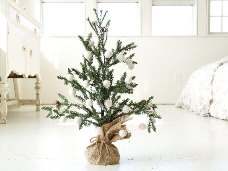 Weihnachtsbaum im Topf sieht frisch aus