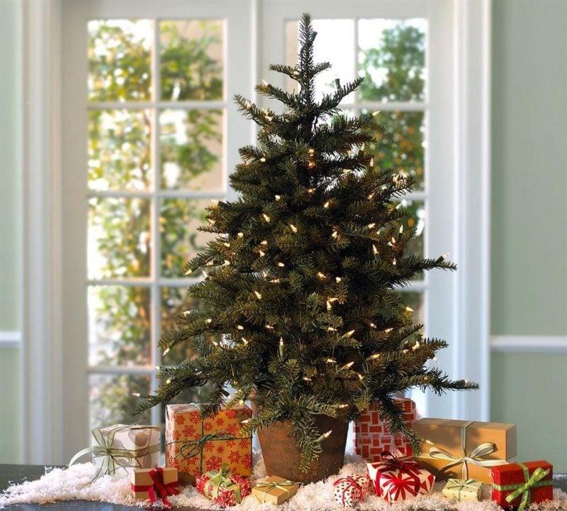 Weihnachtsbaum im Topf wirkt naturell