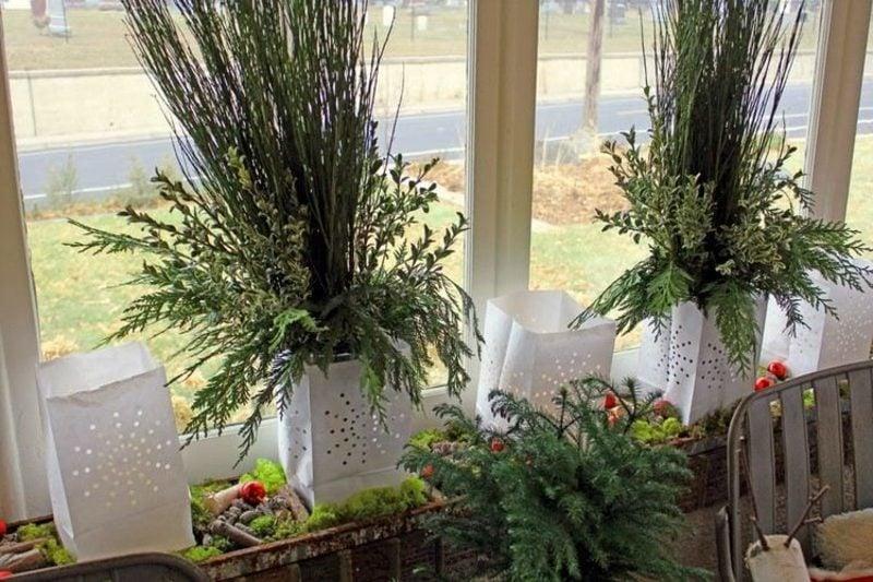 Dekoideen zu Weihnachten grüne Pflanzen Fensterbank