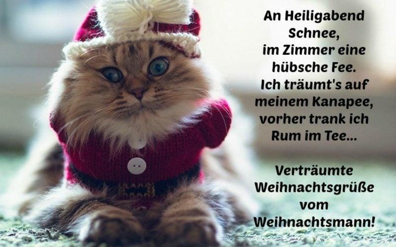 weihnachts und neujahrw nsche f r familie freunde und mitarbeiter