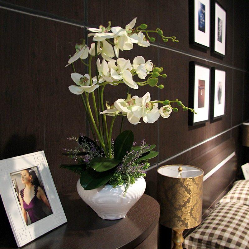 orchideenarten orchideen in vase