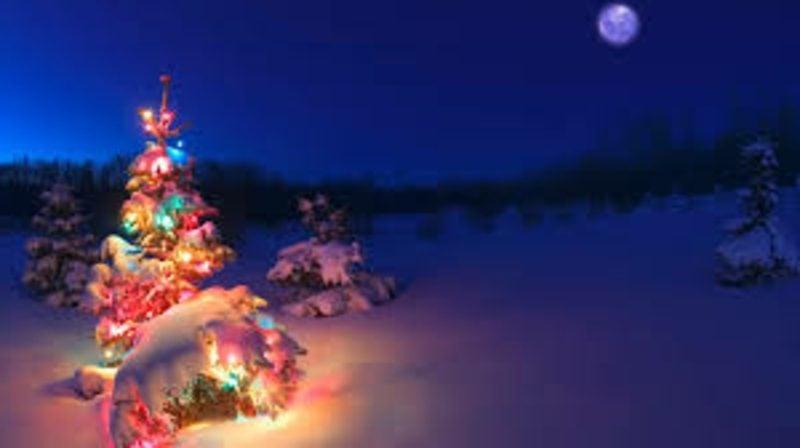 Weihnachtsgrüße weihnachten im wald