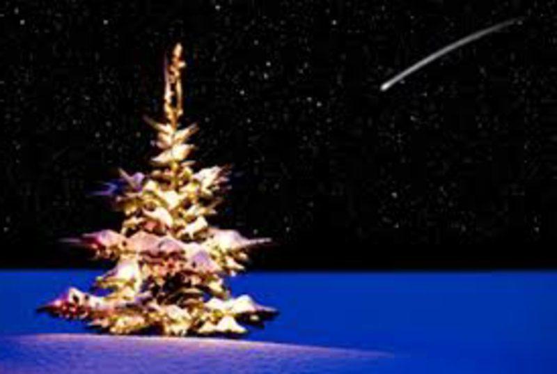 Weihnachtsgrüße weihnachten wald schnee