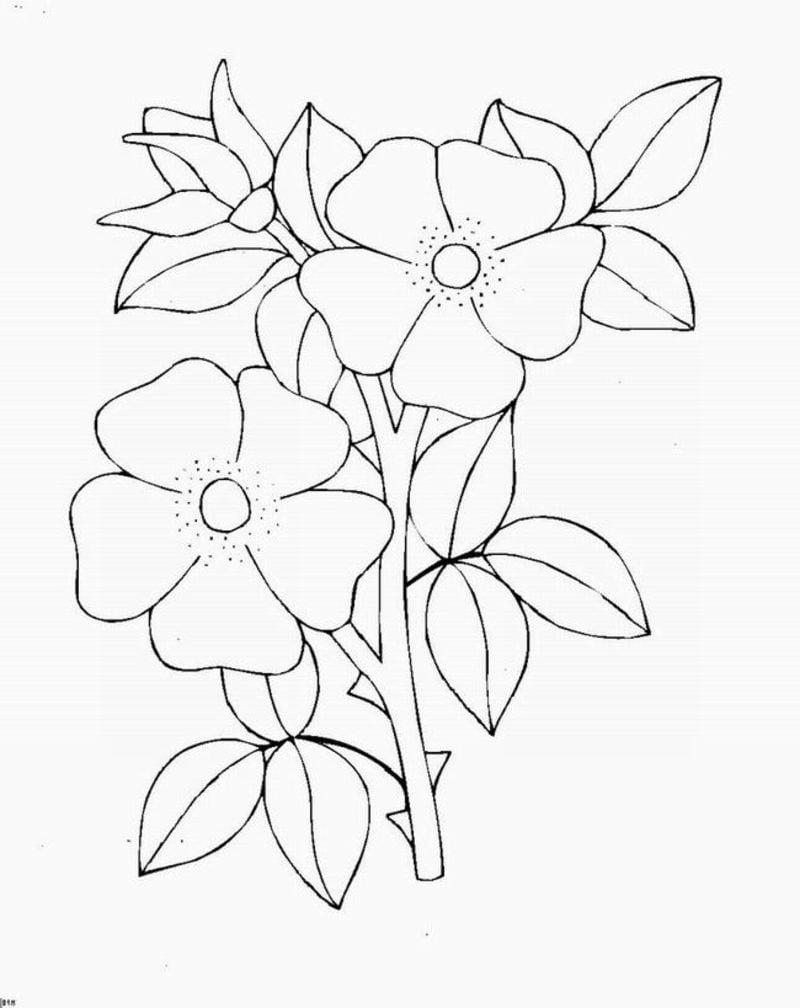Tattoovorlage Blumenranken kreative Ideen für Frauen