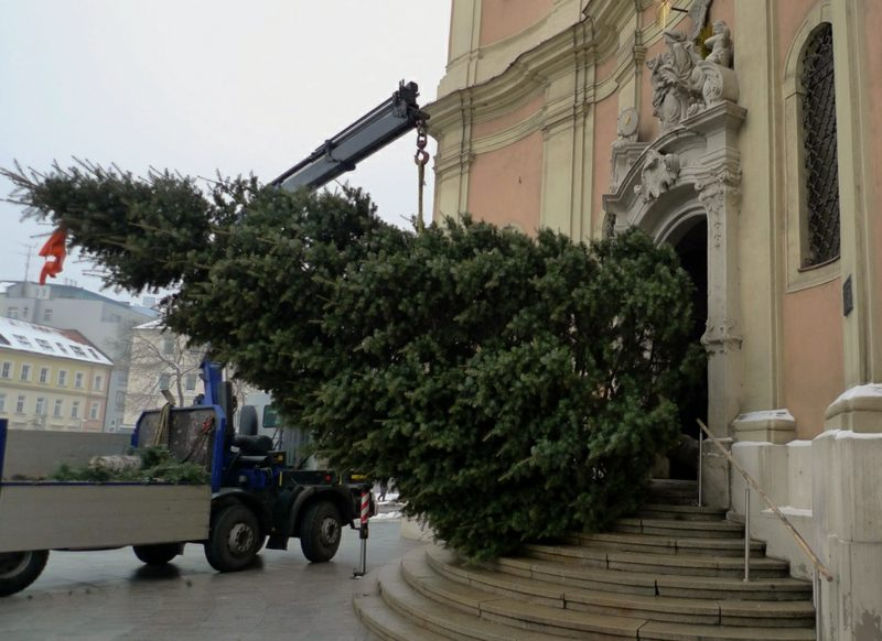 Workers try to install a Christmas tree