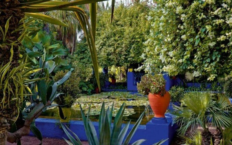 Mondkalender 2015 für Garten den Garten in eine Oase verwandeln
