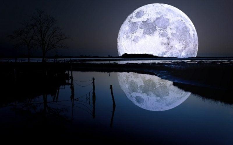 Mondkalender 2015 für Garten Vollmond