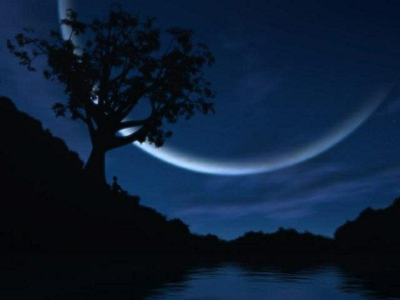 wichtige Mondphasen für den Garten Neumond