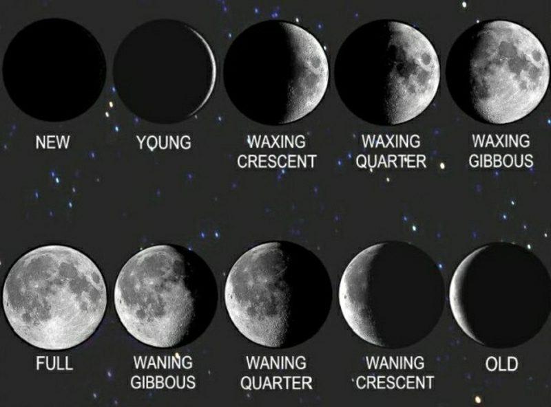 Mondkalender 2015 für Garten die Phasen des Mondes