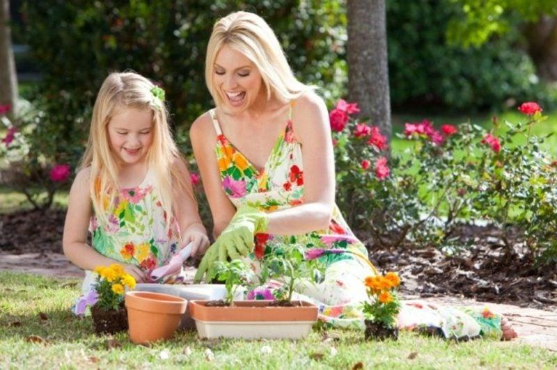Mondkalender 2015 für Garten Umpflanzen