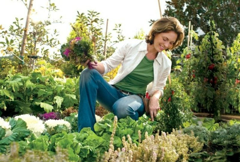 Mondkalender 2015 für Garten wichtige Pflegetipps