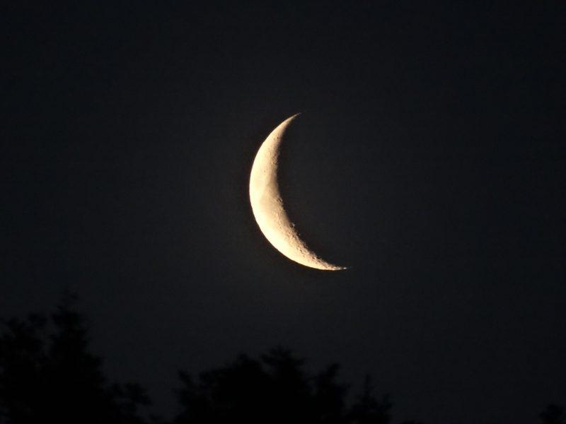 Mondkalender 2015 für Garten abnehmender Mond letzten Viertel