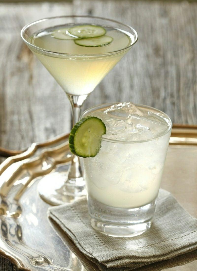 10 gin cocktails die jeder gin liebhaber wissen sollte rezepte zenideen. Black Bedroom Furniture Sets. Home Design Ideas