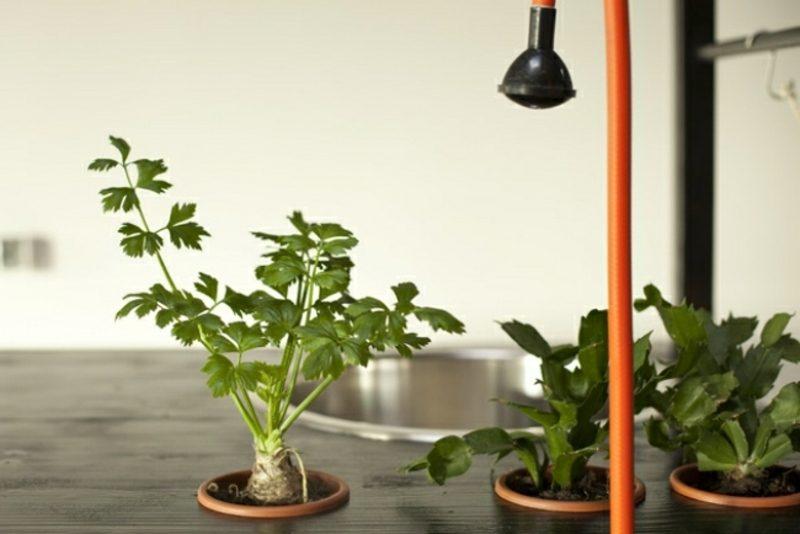 mobile küche: 22 kreative ideen für mehr komfort und flexibilität - Frische Kräuter In Der Küche