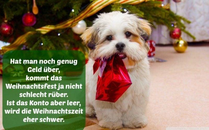 lustige Zitate für Weihnachten Ideen und Inspirationen