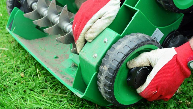 Benzin-Vrtikutieren den Rasen richtig pflegen