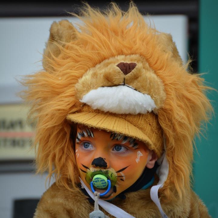 Fasching Verkleidung: Fasching Ideen für Kinderkostüme: Tier Karneval Kostüme: Karnevalskostüm kaufen