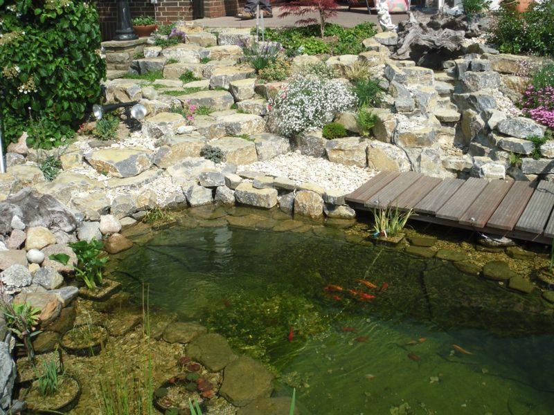 Gartengestaltung Ideen Teich mit goldene Fischen