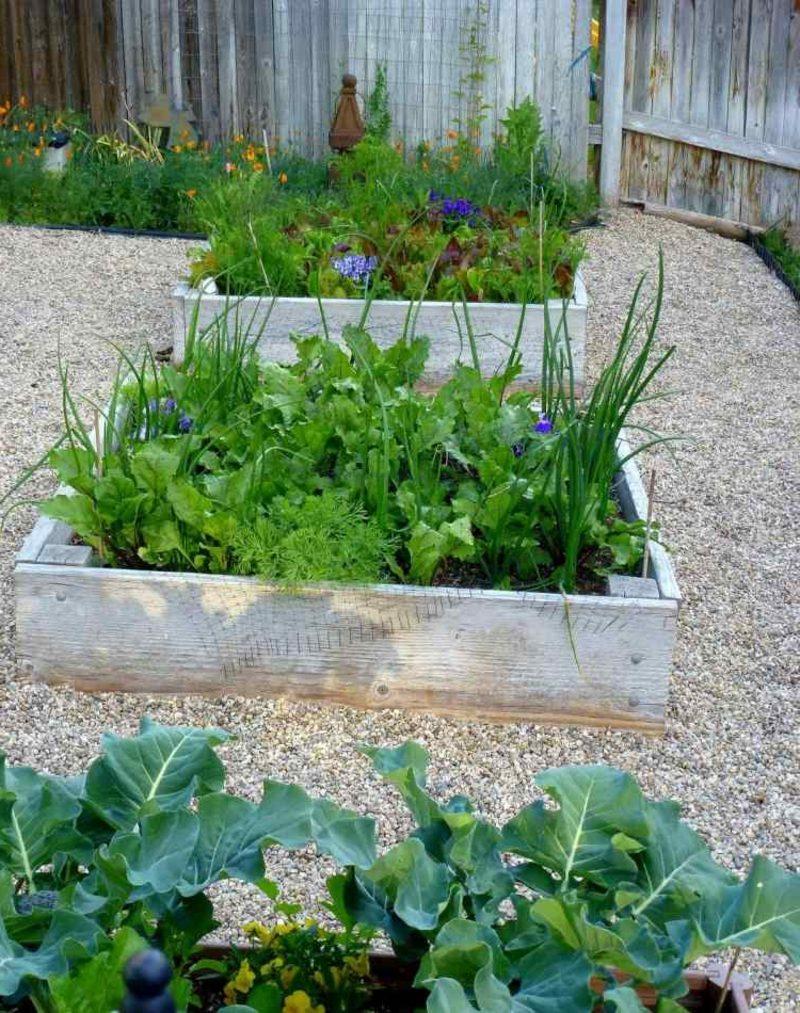 Gartengestaltung Ideen Hochbeete