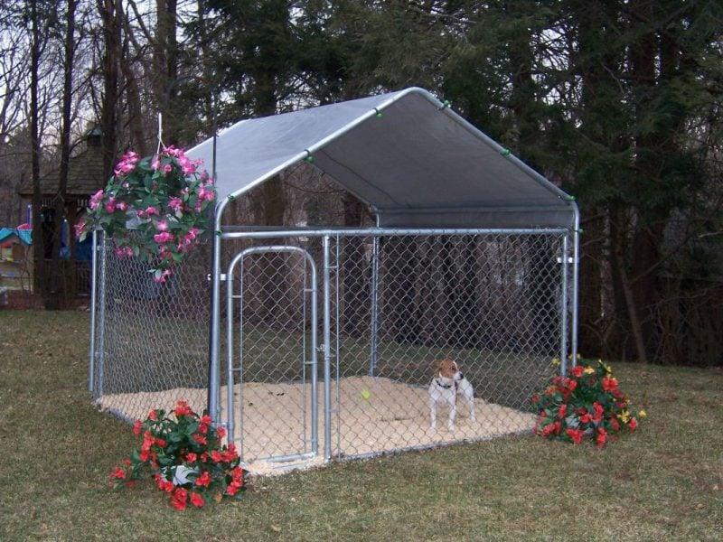 Hundezwinger selber bauen: Ideen!