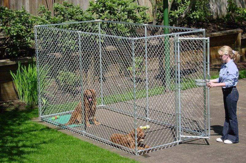 Hundezwinger selber bauen: Was muss man beachten!