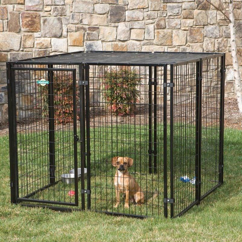 Hundezwinger selber bauen: Wie kann man das machen?