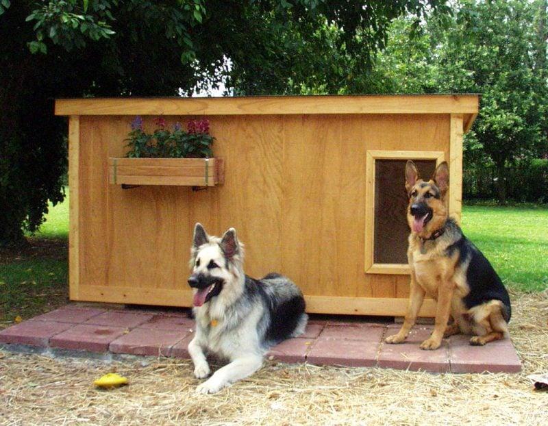 Hundezwinger selber bauen: aus Holz!