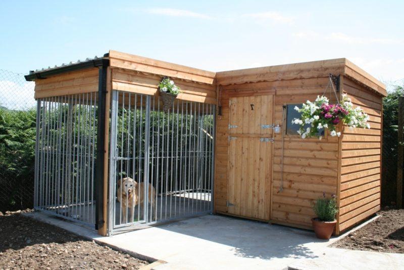 Hundezwinger selber bauen: schöner Wohnen!