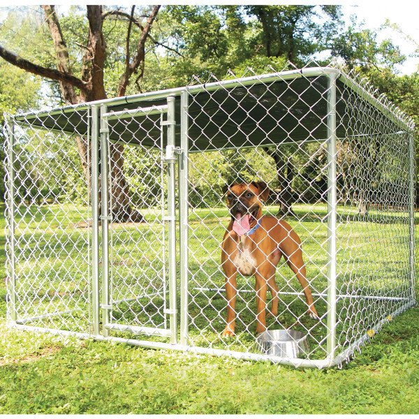 Hundezwinger selber bauen: wichtige Kriterien berücksichtigen!
