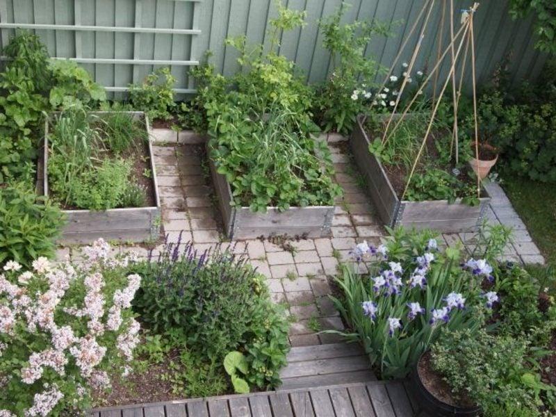 Gartengestaltung Ideen Gemüse anbauen Hochbeete