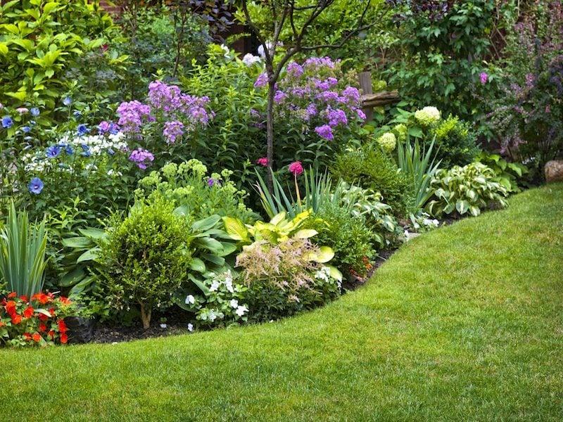 Rasen im Vordergarten richtig vertikutieren