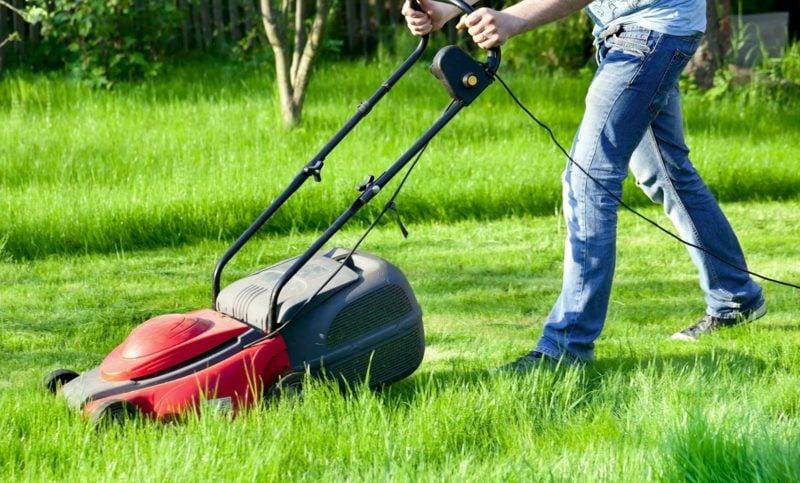 den Rasen richtig vertikutieren wichtige Pflegen