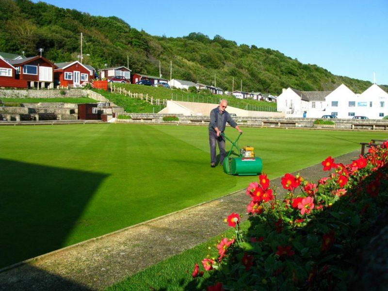 Rasen richtig vertikutieren Tipps und Anleitung Gartenpflege
