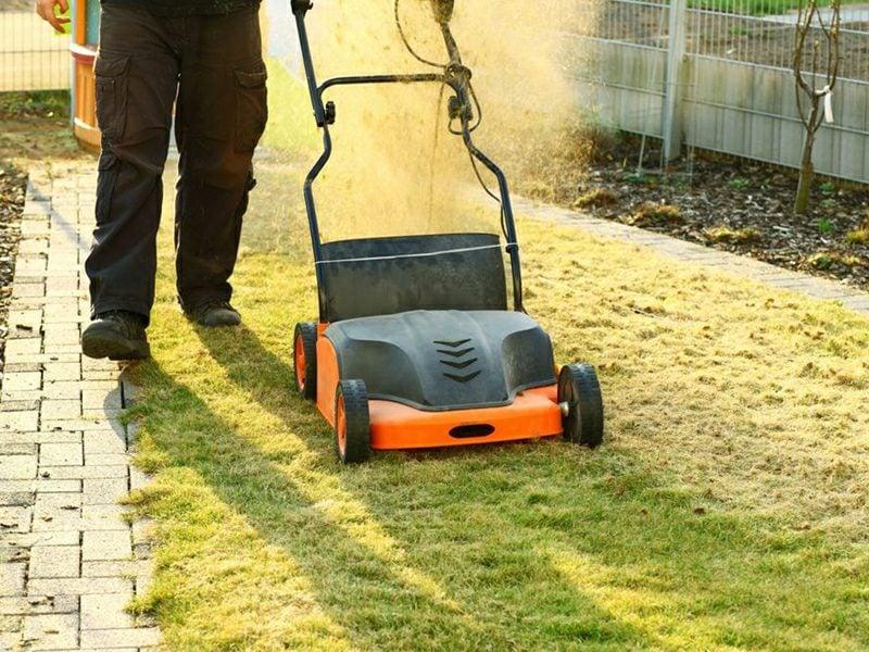 Gartenpflege richtig vertikutieren
