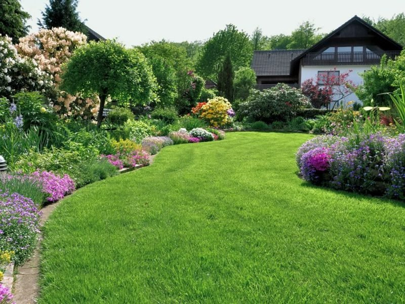 Rasenfläche herrlicher Look richtig vertikutieren