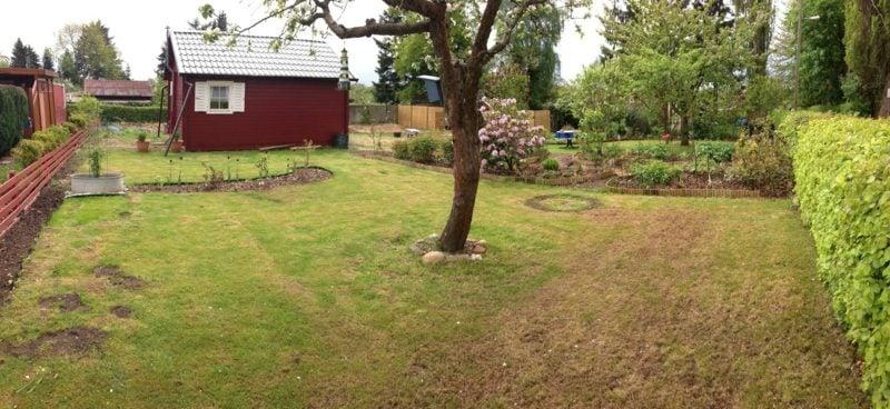 richtig vertikutieren Tipps Gartenpflege