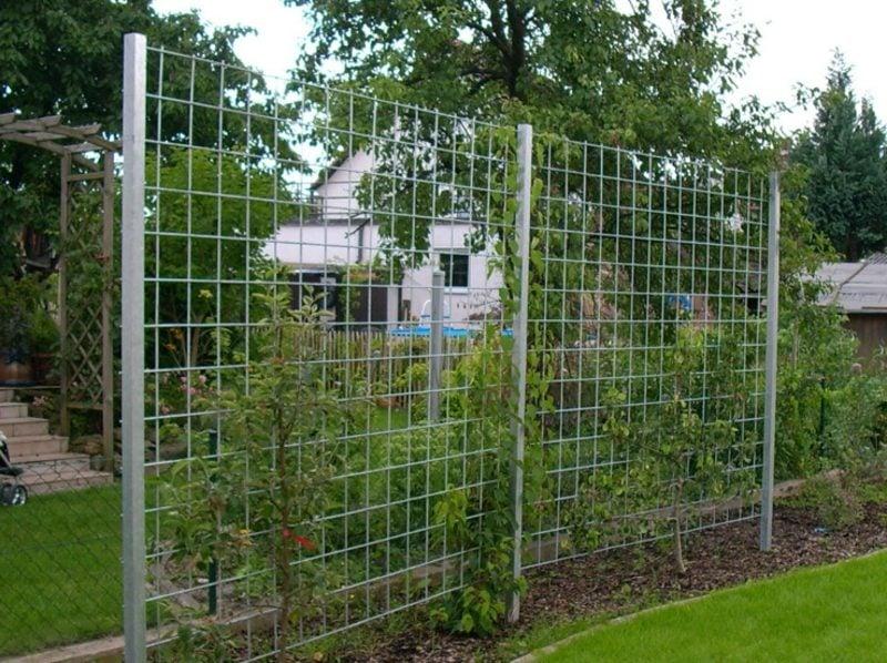 Garten Spalier aus Stahldraht Sichtschutz