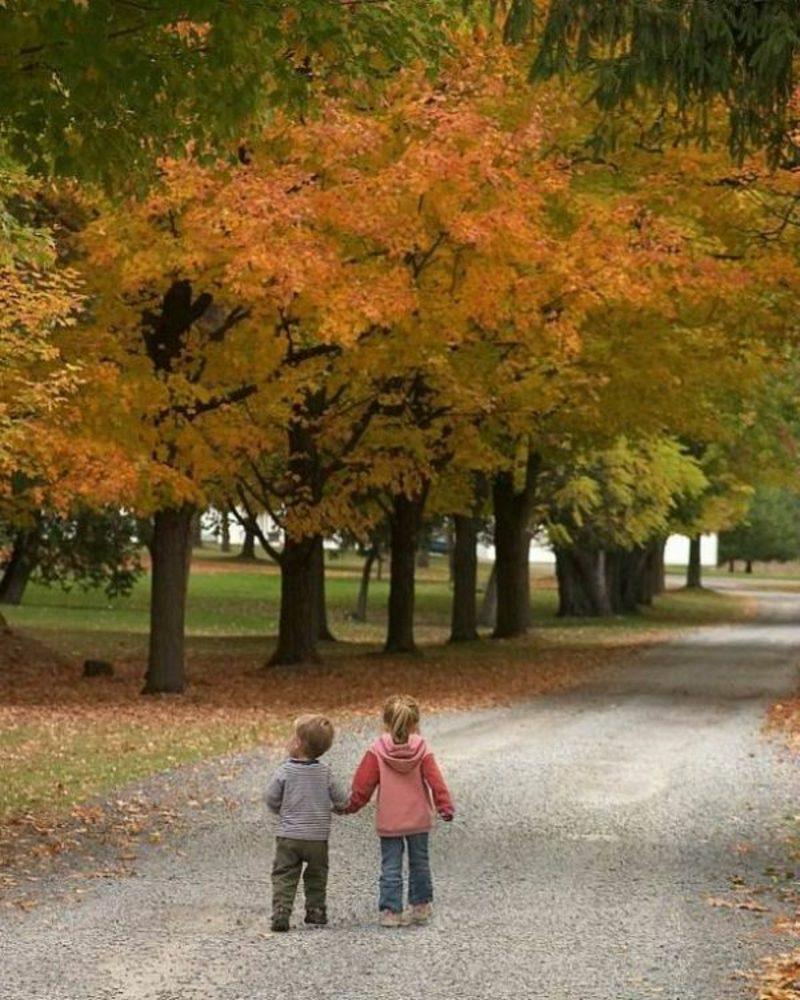 Kalorienverbrauch beim Walken im Park spazieren gehen Kinder
