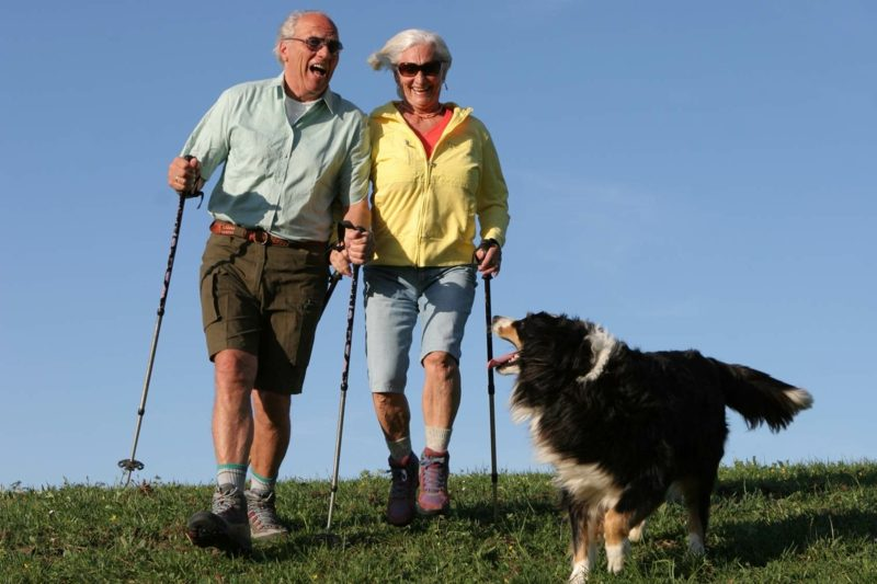 Kalorienverbrauch beim Walken Spaziergang mit dem Hund ältere Menschen