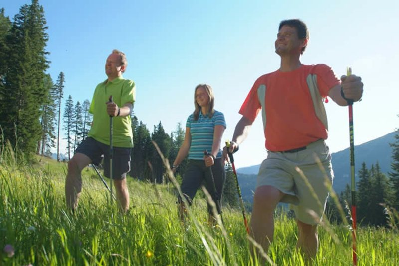Kalorienverbrauch beim Walken Gesundheit Abnehmen