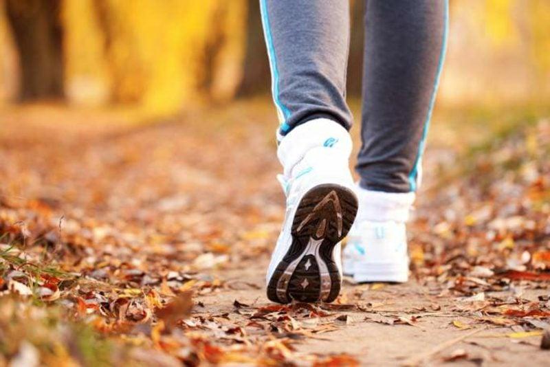 Kalorienverbrauch beim Walken Spaziergang im Park