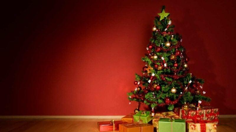 Weihnachtsbaum und darunter liegende Geschenke
