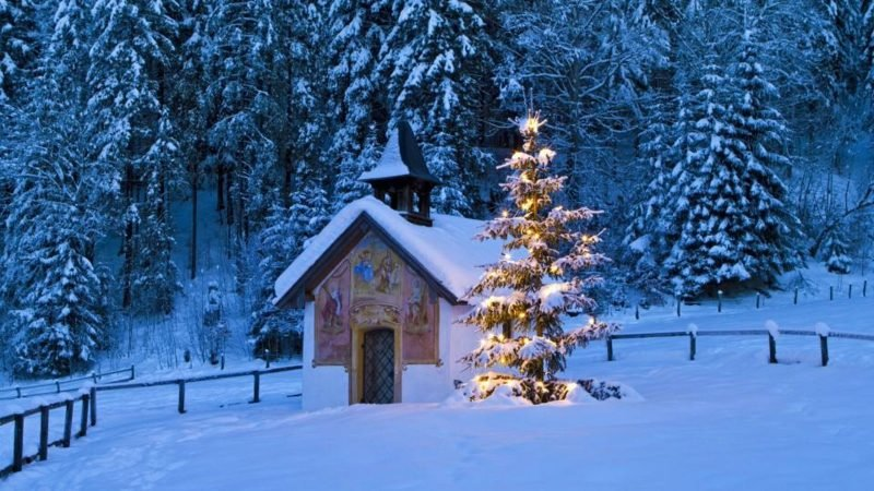 herrliche Winterlandschaft Weihnachtsbaum Schnee