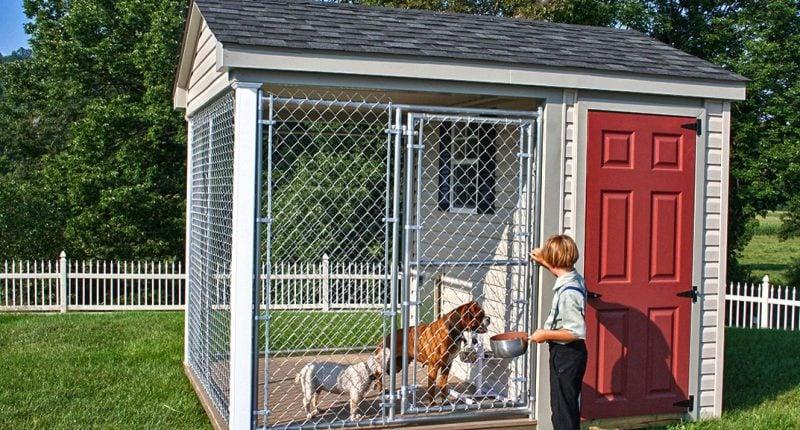 Wie kann man Hundezwinger selber bauen?