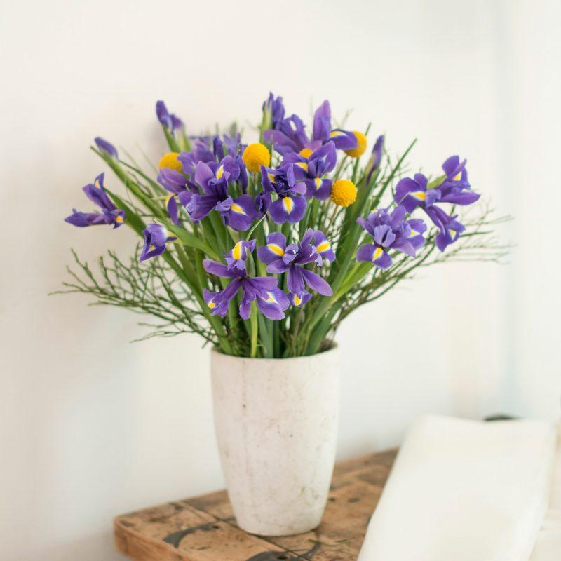 Blumen zum Valentinstag - Bedeutung und Tipps