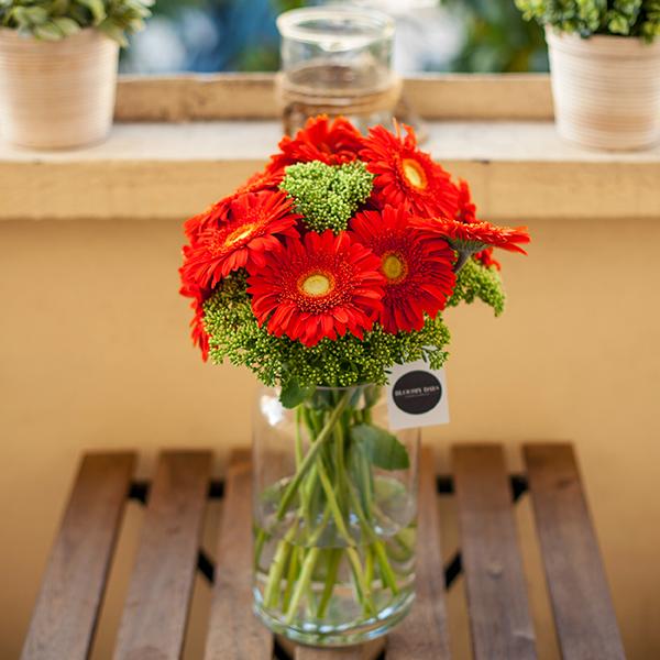 Blumen zum Valentinstag: Gerbera bedeutet Kompliment