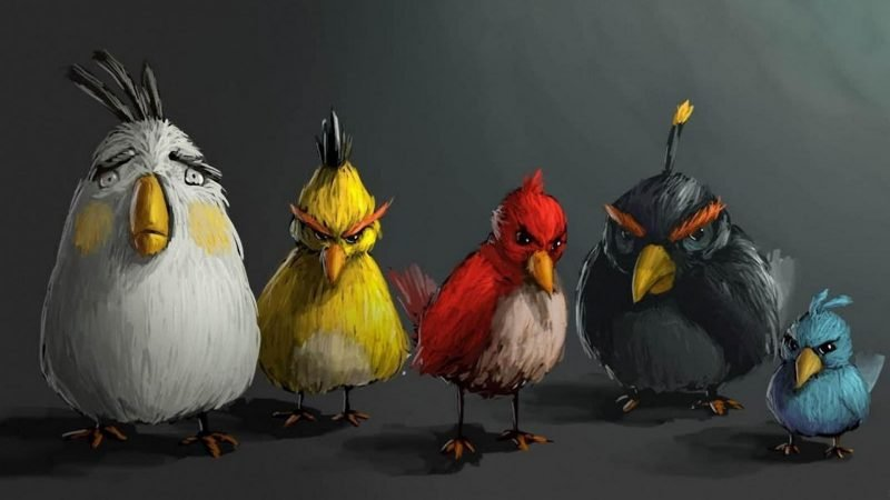 coole hintergründe tier motive vogel kunst hd pc wallpaper geile hintergrundbilder