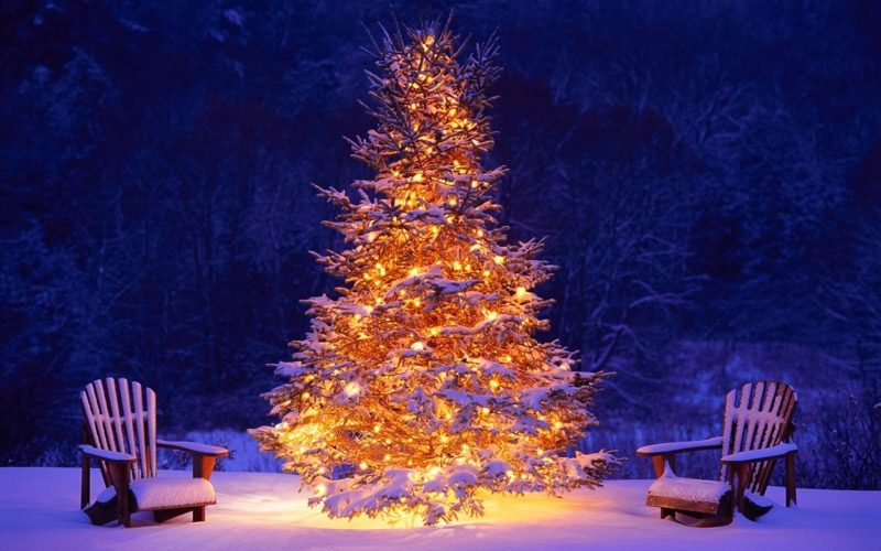 Weihnachtsbaum unter freiem Himmel Schnee